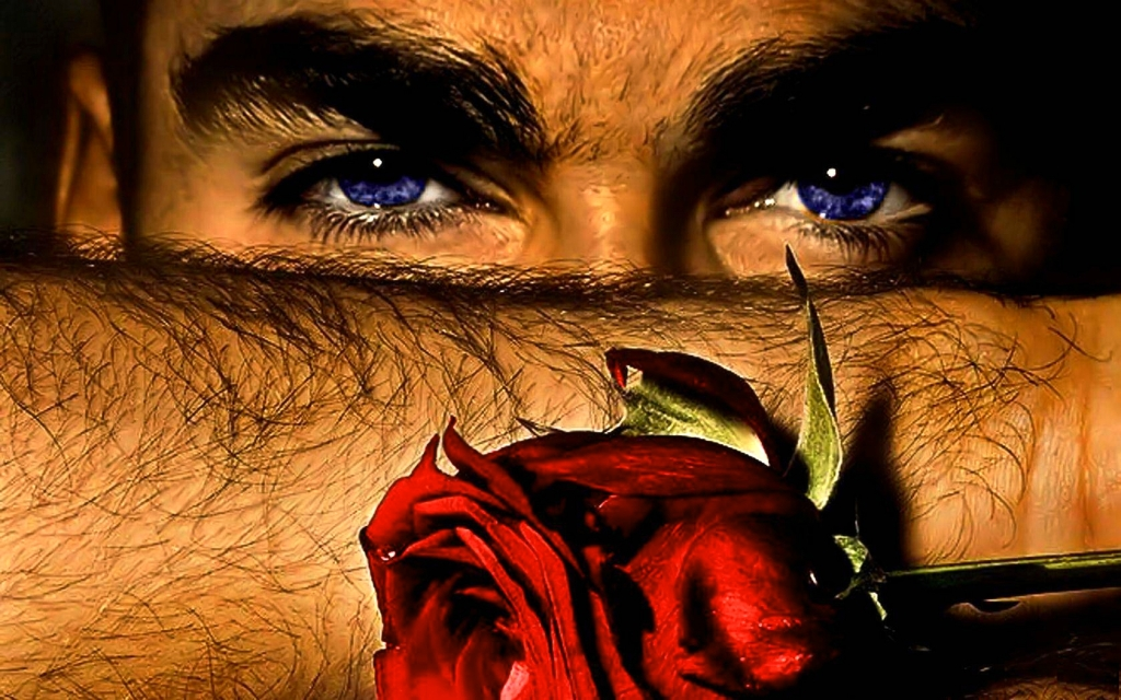 sexy_rose_for_softwind_handsome_man_red_hd-wallpaper-1077566