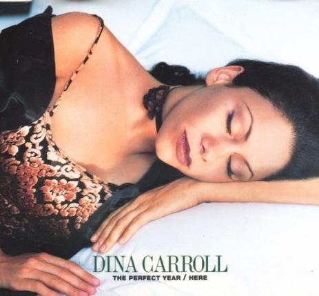 Dina Carroll The Perfect Year