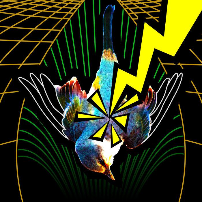 FRESH: 'VOIDZ Brazil'- BLARG